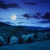 Los árboles acercan al valle en montañas en la noche Foto de archivo libre de regalías