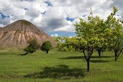 Los árboles acercan a la mina de carbón vieja Foto de archivo libre de regalías