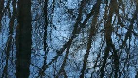 Los árboles contra el cielo azul se reflejan en las corrientes de la primavera metrajes