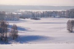 Los árboles de abedul debajo de la escarcha en campo de nieve en invierno sazonan Imagenes de archivo