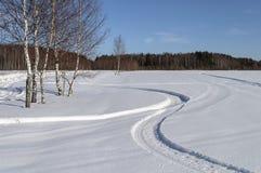 Los árboles de abedul y el campo de nieve en el pueblo outskirts Fotos de archivo