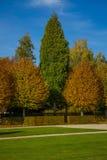 Los árboles de color verde amarillo en el castillo parquean con el césped Foto de archivo