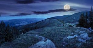 Los árboles de pino acercan al valle en montaña en la noche Fotos de archivo libres de regalías