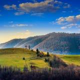 Los árboles de pino acercan al valle en montañas en la ladera debajo del cielo con Foto de archivo