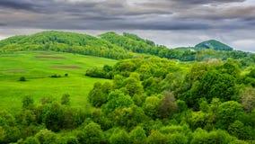 Los árboles de pino acercan al valle en montañas en la ladera debajo del cielo con Foto de archivo libre de regalías