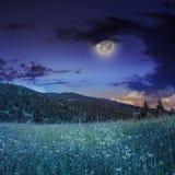 Los árboles de pino acercan al valle en montañas en la ladera debajo del cielo nocturno Imagen de archivo