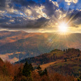 Los árboles de pino acercan al valle en montañas en la ladera en la puesta del sol Imagenes de archivo