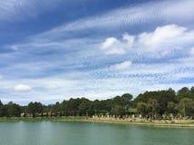 Los árboles de pino con el lago en Dalat, Vietnam Imagen de archivo