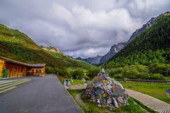 Los árboles de pino del paisaje de la montaña acercan al valle y al bosque colorido en la ladera Foto de archivo libre de regalías