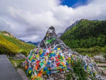 Los árboles de pino del paisaje de la montaña acercan al valle y al bosque colorido en la ladera Fotografía de archivo