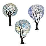 Los árboles del invierno fijaron 1 Foto de archivo libre de regalías