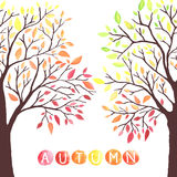 Los árboles del otoño con caer abajo se van ilustración del vector