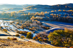 Los árboles del otoño en la orilla Fotografía de archivo