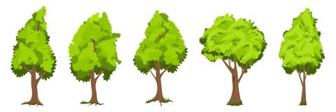 Los árboles del vector fijaron ilustración del vector