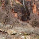 Los árboles desnudos del invierno enmarcan una pequeña cascada temporal que descienda del barranco ocultado sobre un acantilado c imagen de archivo