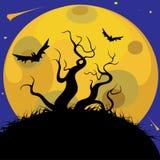 Los árboles en el fondo de la luna Imagenes de archivo