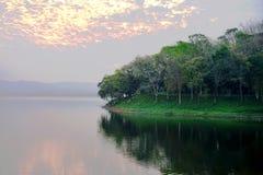 Los árboles en la tierra al lado del agua por la mañana se encienden Fotos de archivo libres de regalías