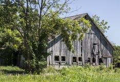 Los árboles enmarcan un envejecimiento, granero de madera en una zona rural Imagen de archivo