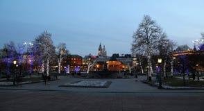 Los árboles iluminaron a los días de fiesta de la Navidad y del Año Nuevo en la noche Fotos de archivo