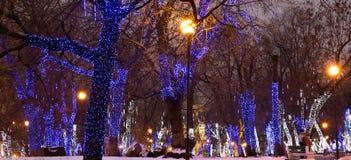 Los árboles iluminaron a los días de fiesta de la Navidad y del Año Nuevo en la noche en Moscú, Rusia Imagenes de archivo