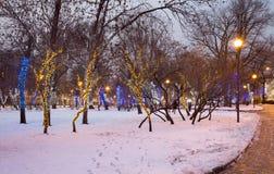 Los árboles iluminaron a los días de fiesta de la Navidad y del Año Nuevo en la noche en Moscú, Rusia Foto de archivo libre de regalías