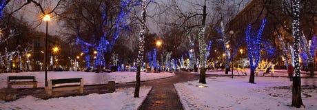 Los árboles iluminaron a los días de fiesta de la Navidad y del Año Nuevo en la noche en Moscú, Rusia Fotos de archivo
