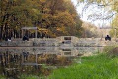 Los árboles, robles, abedules con amarillo secan las hojas, hierba verde, un ston Foto de archivo libre de regalías