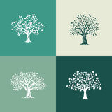 Los árboles siluetean el conjunto Foto de archivo