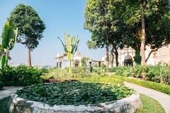 Los árboles tropicales parquean cerca del lago Pichola en Udaipur, la India imagen de archivo