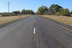Los árboles verdes alinean una avenida del honor en Australia rural fotos de archivo