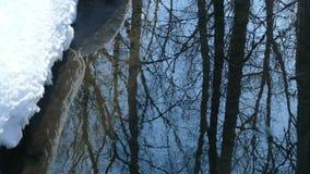 Los árboles y el cielo azul de la primavera se reflejan en una corriente de no-congelación metrajes