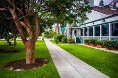 Los árboles y el edificio a lo largo de una trayectoria en Pointe del sur parquean, Miami Beac foto de archivo libre de regalías