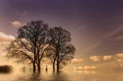 Los árboles y la cruz Foto de archivo
