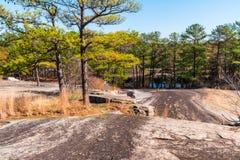 Los árboles y la tierra de piedra en Stone Mountain parquean, Georgia, los E.E.U.U. Imagen de archivo libre de regalías