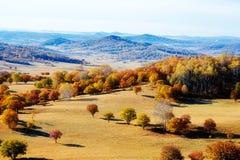 Los árboles y las colinas del otoño en el prado Fotos de archivo libres de regalías