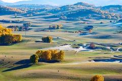 Los árboles y las colinas del otoño en la pradera Imágenes de archivo libres de regalías