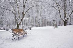 Los árboles y los bancos nevados en la ciudad parquean Imágenes de archivo libres de regalías