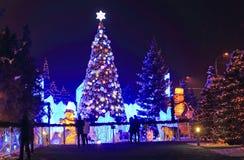 Los Años Nuevos atavían en parque en la noche Imagen de archivo