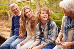 Los abuelos y las adolescencias se sientan en el puente en un bosque, vista lateral Imagen de archivo libre de regalías
