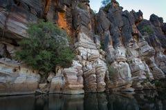Los acantilados antiguos de la piedra caliza en Geikie Gorge, Kimberley, Australia occidental Foto de archivo libre de regalías