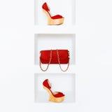 Los accesorios de las mujeres de lujo Zapatos y bolso elegantes Fotos de archivo