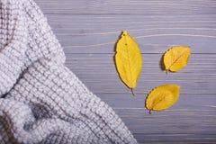 Los accesorios del otoño hicieron punto los suéteres y las hojas Fotos de archivo libres de regalías