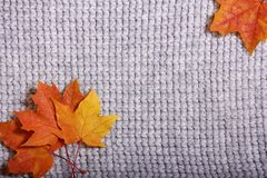 Los accesorios del otoño hicieron punto los suéteres y las hojas Imágenes de archivo libres de regalías