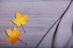 Los accesorios del otoño hicieron punto los suéteres y las hojas Fotos de archivo