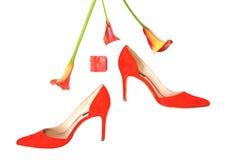 Los accesorios elegantes femeninos forman el equipo de lujo fijado: zapatos, regalo y flores rojos en el fondo blanco del color c foto de archivo