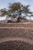 Los acueductos de Puquios en Perú Fotos de archivo libres de regalías