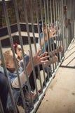 Los adolescentes agrupan divertirse junto en el parque del monopatín Imagenes de archivo