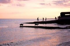 Los adolescentes que juegan en la puesta del sol en las aguas afilan silueteado por el sol Imagenes de archivo