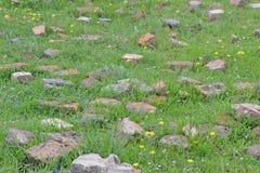 Los adoquines en la hierba contexto Imagenes de archivo