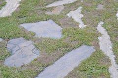 Los adoquines en la hierba contexto Fotos de archivo libres de regalías